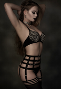 Premier Lingerie 'Gladiator' Suspender / Garter Belt for Stockings (NDBTP6) [UK]